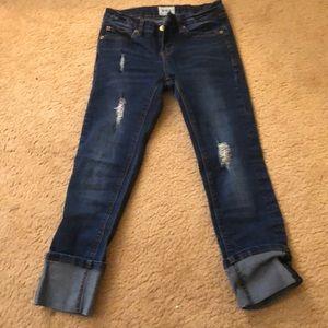 Hudson Capri skinny jeans